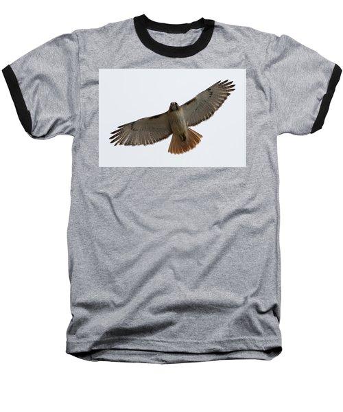 Hawk Overhead Baseball T-Shirt