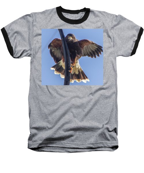 Hawk Watch 6 Baseball T-Shirt