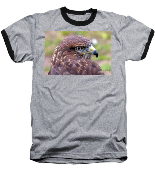 Hawks Eye View Baseball T-Shirt by Stephen Melia