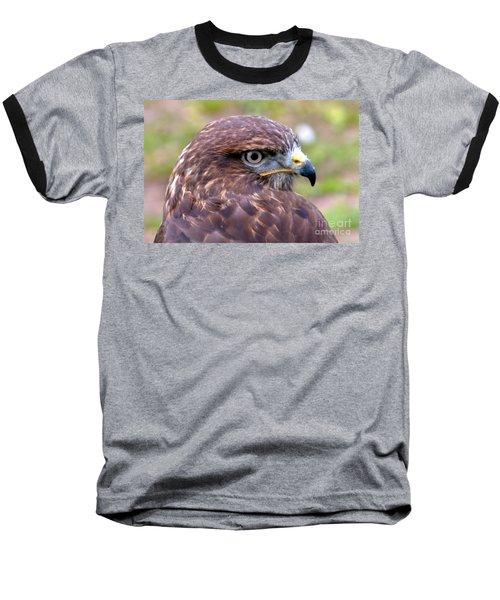 Hawks Eye View Baseball T-Shirt