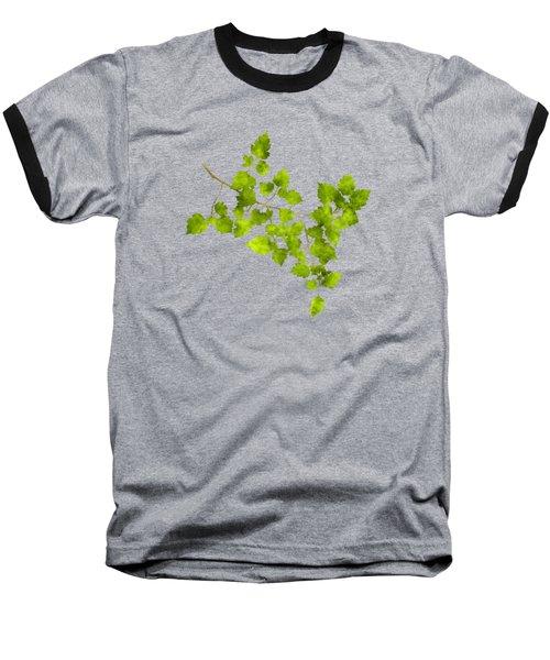 Hawthorn Pressed Leaf Art Baseball T-Shirt