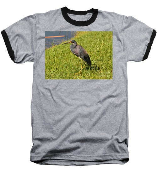 Baseball T-Shirt featuring the photograph Heading For Water by Carol  Bradley