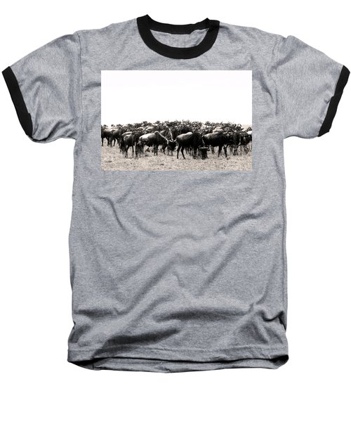 Herd Of Wildebeestes Baseball T-Shirt