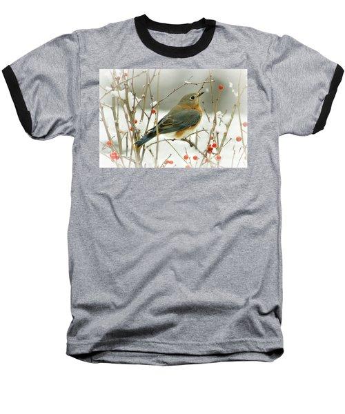 Hearts Desire Baseball T-Shirt by Barbara S Nickerson
