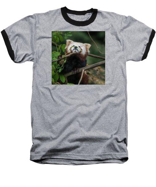 Heavenwards Baseball T-Shirt by Greg Nyquist