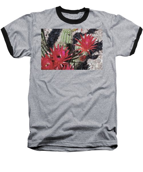 Hedgehog Cactus Baseball T-Shirt