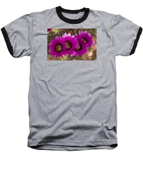Baseball T-Shirt featuring the photograph Hedgehog Lineup by Laura Pratt