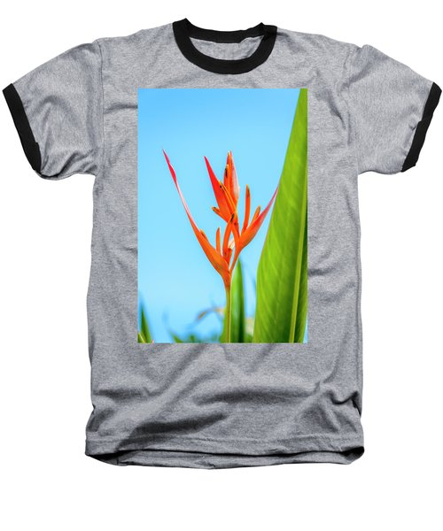 Heliconia Flower Baseball T-Shirt