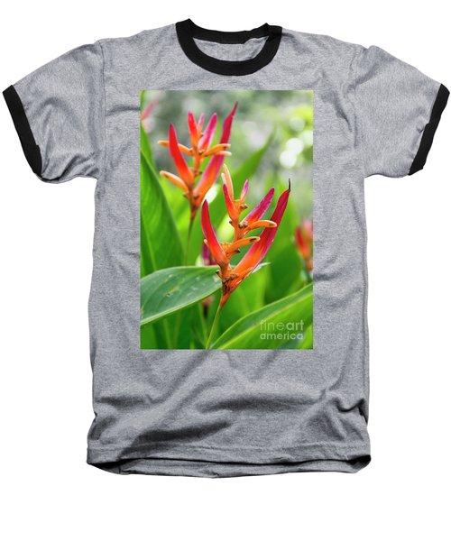 Heliconia Psittacorum Baseball T-Shirt