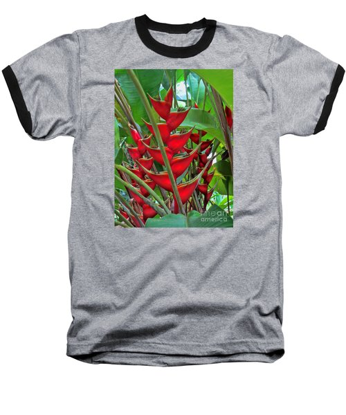Heliconias Baseball T-Shirt by Steven Parker