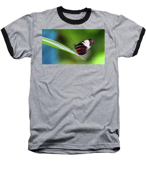Heliconius Baseball T-Shirt