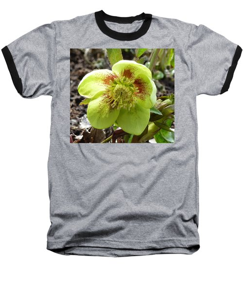 Hellebore Baseball T-Shirt