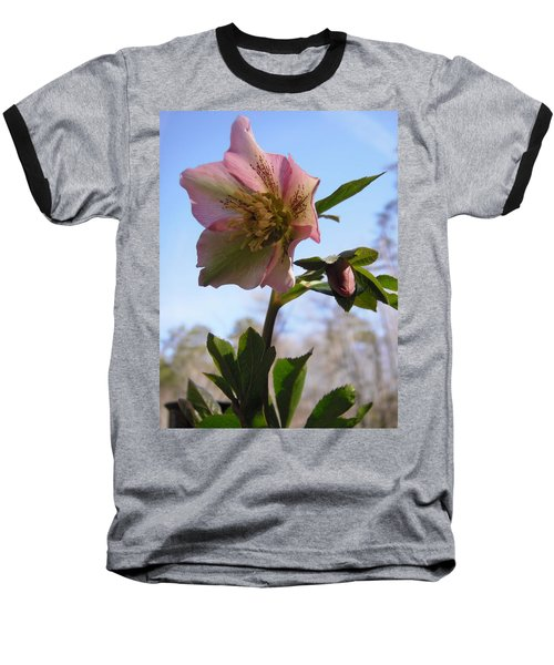 Hellebore Morning Baseball T-Shirt