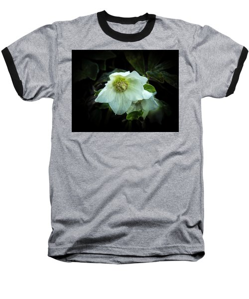 Helleborus Through The Darkness Baseball T-Shirt