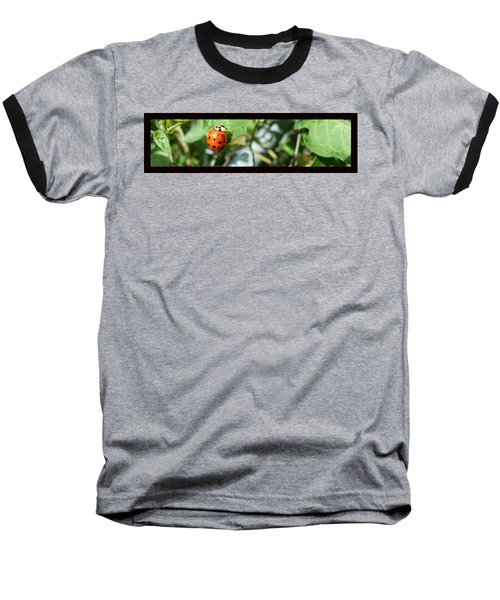 Baseball T-Shirt featuring the photograph Hello Lady by Robert Knight