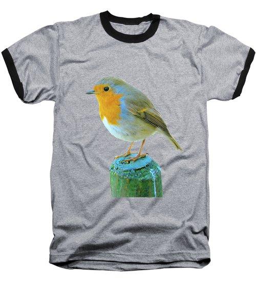 Hello Robin Baseball T-Shirt