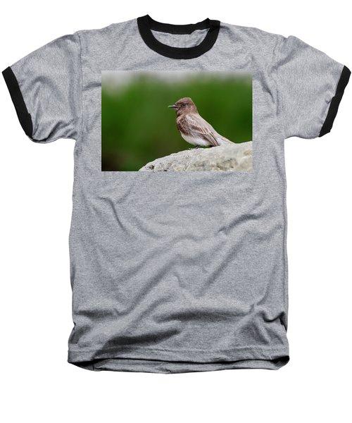 Black Phoebe Baseball T-Shirt
