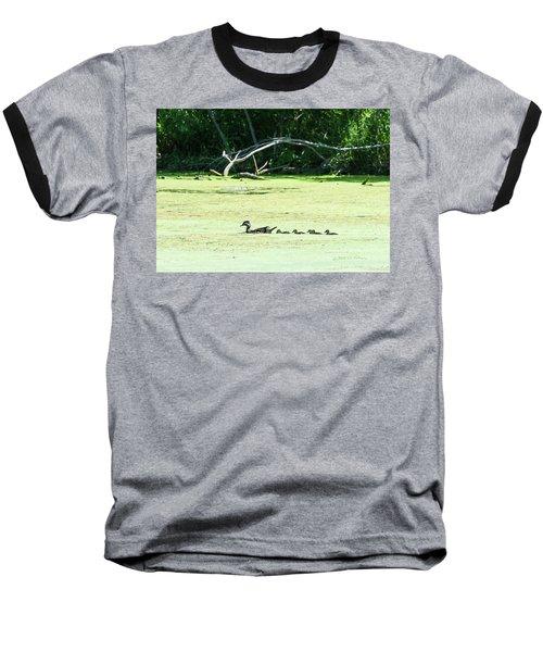 Hen And Baby Wood Ducks Baseball T-Shirt by Edward Peterson