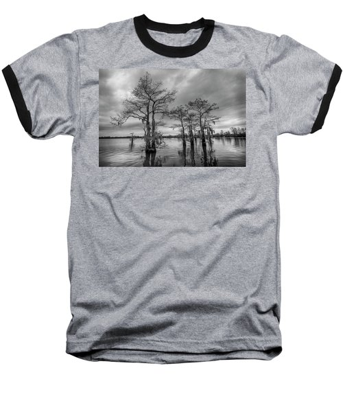Henderson Swamp Wetplate Baseball T-Shirt by Andy Crawford