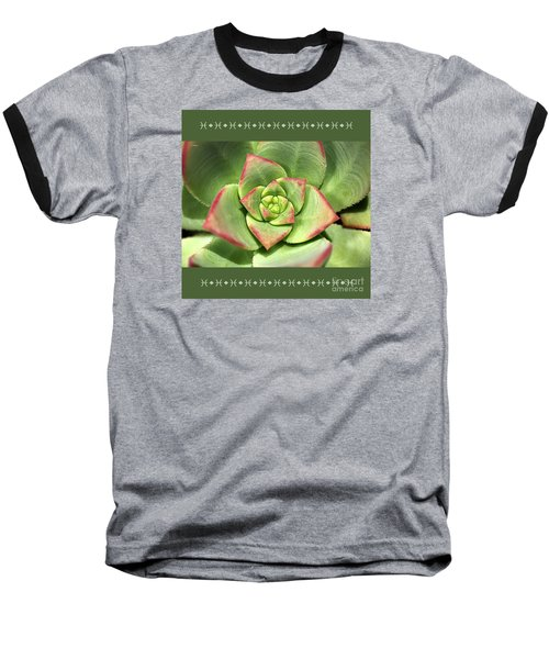 Hens And Chicks Succulent And Design Baseball T-Shirt by Joy Watson