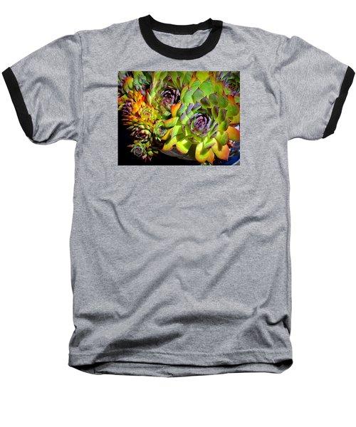 Hens 'n Chicks Baseball T-Shirt by Lori Seaman