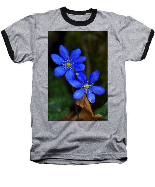 Hepatica Nobilis Baseball T-Shirt