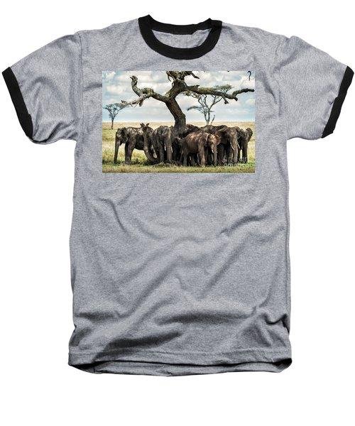 Herd Of Elephants Under A Tree In Serengeti Baseball T-Shirt
