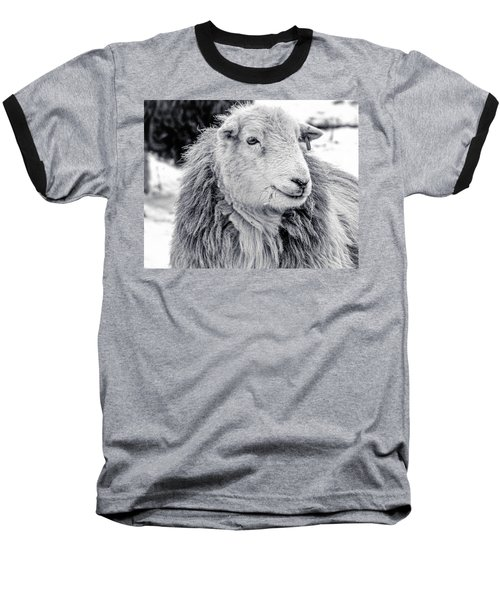 Herdwick Sheep Baseball T-Shirt