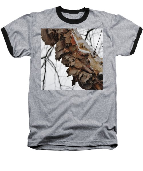 Baseball T-Shirt featuring the photograph Heritage Birch by Vadim Levin