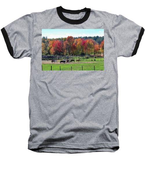 Heritage Farm In Easthampton, Ma Baseball T-Shirt