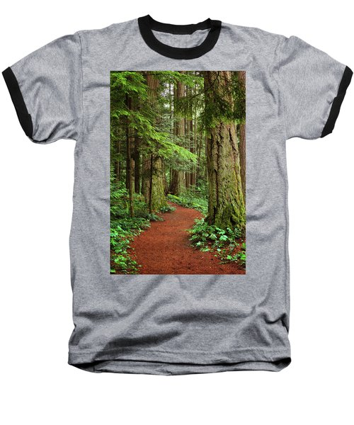 Heritage Forest 2 Baseball T-Shirt by Randy Hall
