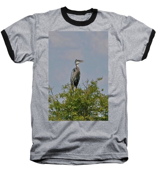 Baseball T-Shirt featuring the photograph Heron Sitting In Tree by Carol  Bradley