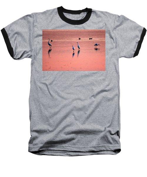 Herons At Sunrise Baseball T-Shirt