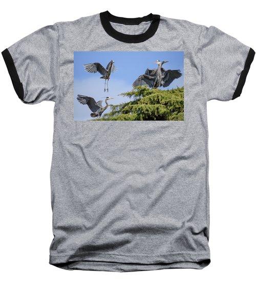 Herons Mating Dance Baseball T-Shirt by Keith Boone