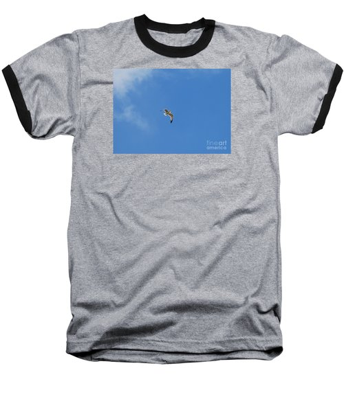 Baseball T-Shirt featuring the photograph Herring Sea Gull 20120409_244a by Tina Hopkins