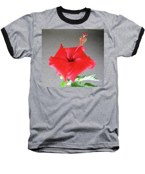 Hibiscus #1 Baseball T-Shirt