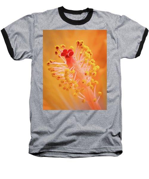 Hibiscus-1 Baseball T-Shirt