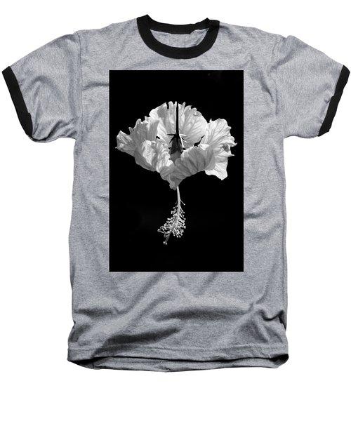 Hibiscus As Art 2 Baseball T-Shirt by Hitendra SINKAR