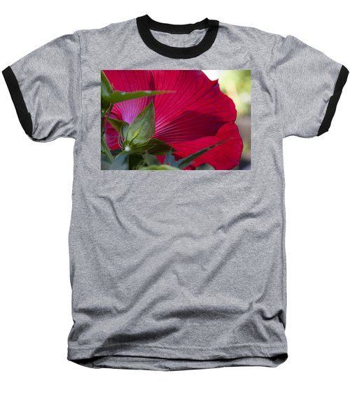 Baseball T-Shirt featuring the photograph Hibiscus by Charles Harden