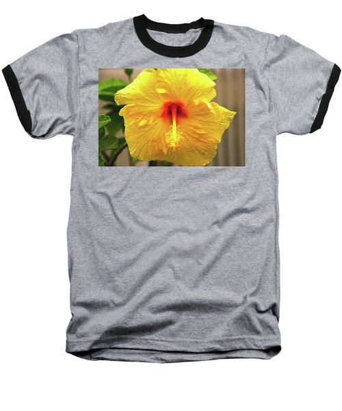 Hibiscus Flower After The Rain Baseball T-Shirt by Michael Courtney