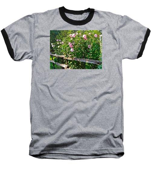 Hibiscus Hedge Baseball T-Shirt by Randy Rosenberger