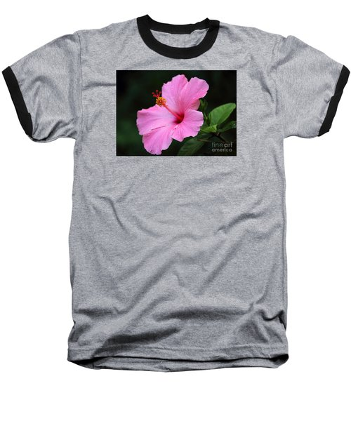 Hibiscus In Pink Baseball T-Shirt by Lisa L Silva