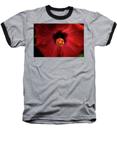 Hibiscus Baseball T-Shirt by Jay Stockhaus