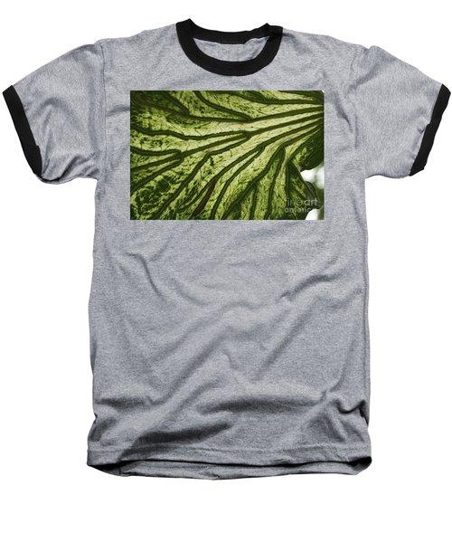 Hibiscus Tiliaceus Variegata 3 Baseball T-Shirt