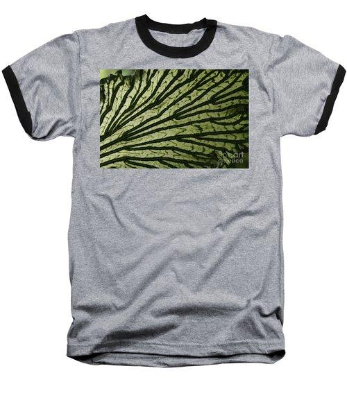 Hibiscus Tiliaceus Variegata Baseball T-Shirt