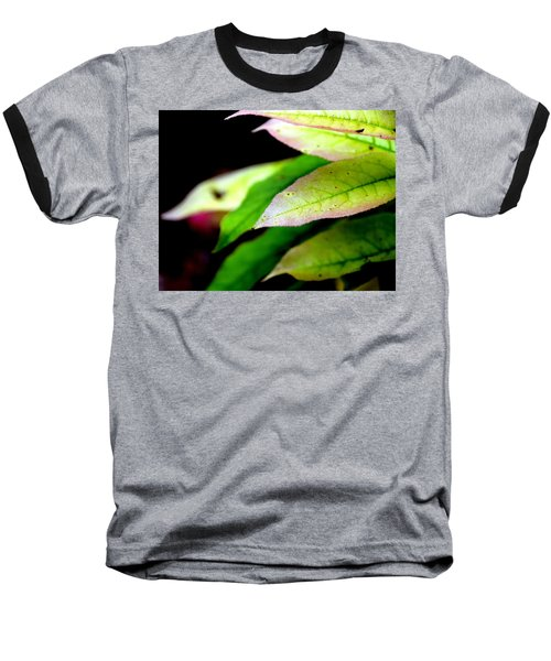 Hickory Leaf Baseball T-Shirt