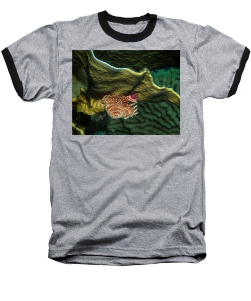 Baseball T-Shirt featuring the photograph Hidden Christmastree Worm by Jean Noren
