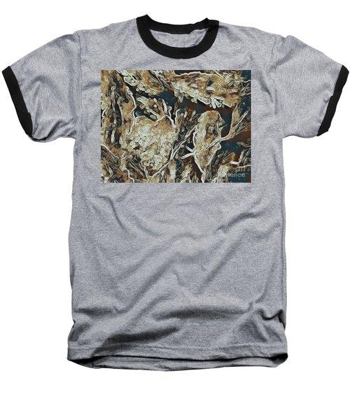 Hidden In Plain Sight Baseball T-Shirt