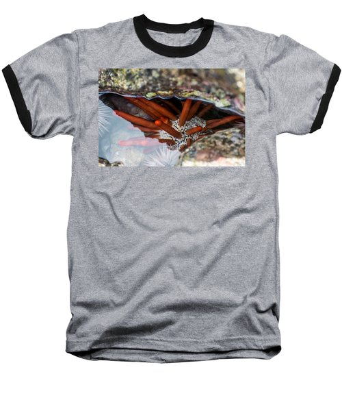 Baseball T-Shirt featuring the photograph Hidden Treasure by Colleen Coccia