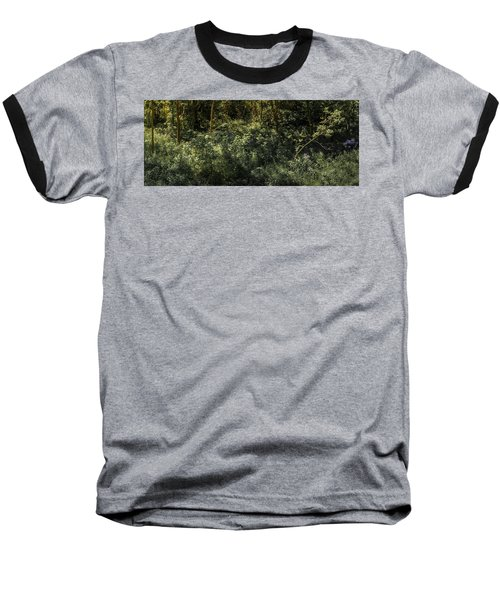Hidden Wildflowers Baseball T-Shirt